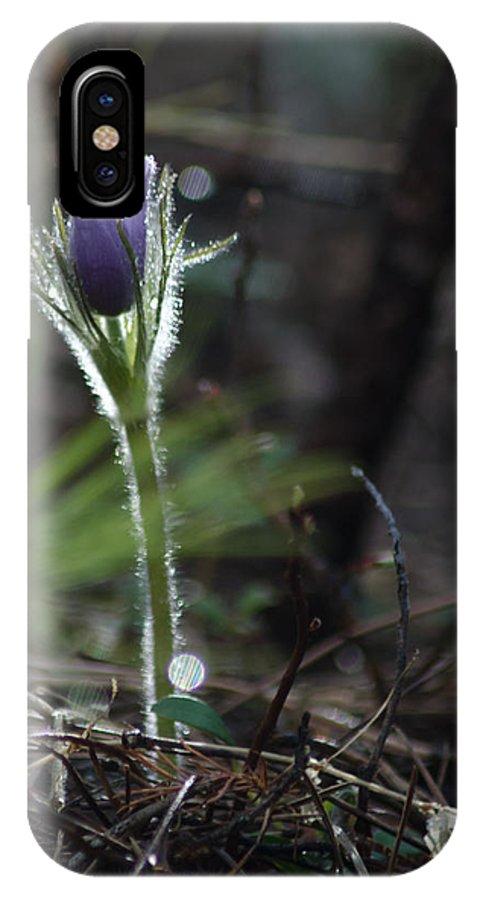 Dakota IPhone X / XS Case featuring the photograph After The Rain by Dakota Light Photography By Dakota