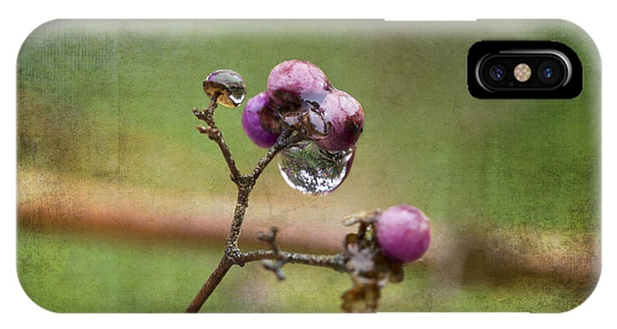 After The Rains IPhone X Case featuring the photograph After The Rains by Angela Stanton