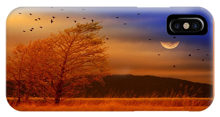 Landscape IPhone X Case featuring the photograph Against The Wind by Holly Kempe