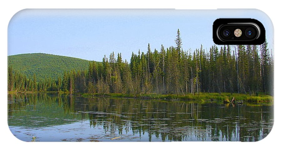 Alaska IPhone X Case featuring the photograph Alaska River Swamp by Lew Davis