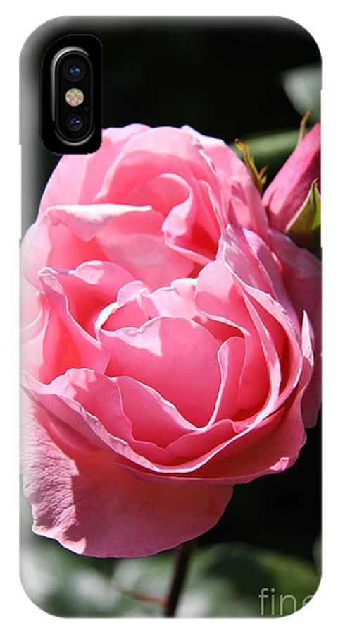 Rose IPhone X Case featuring the photograph All Shades Of Pink by Christiane Schulze Art And Photography