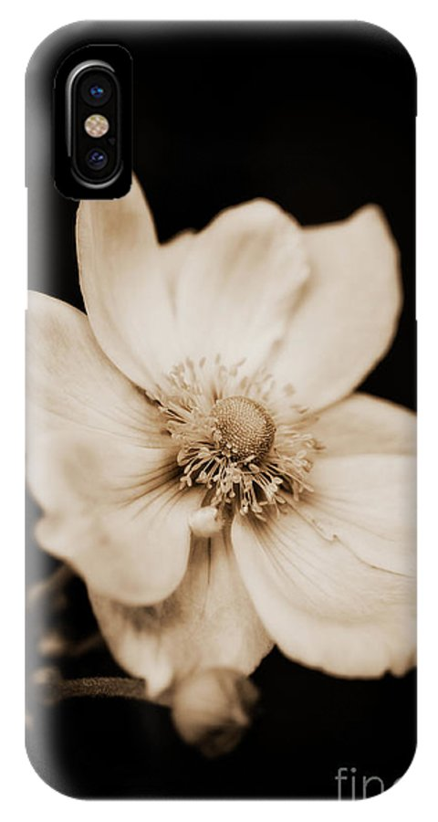 Botanical IPhone X Case featuring the photograph Alluring Anemone by Venetta Archer