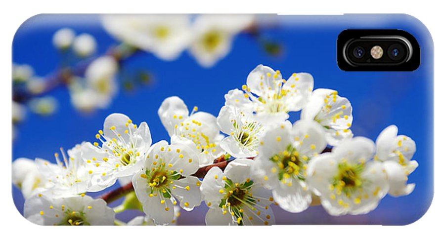 Abstract IPhone X Case featuring the photograph Almond Blossom by Carlos Caetano