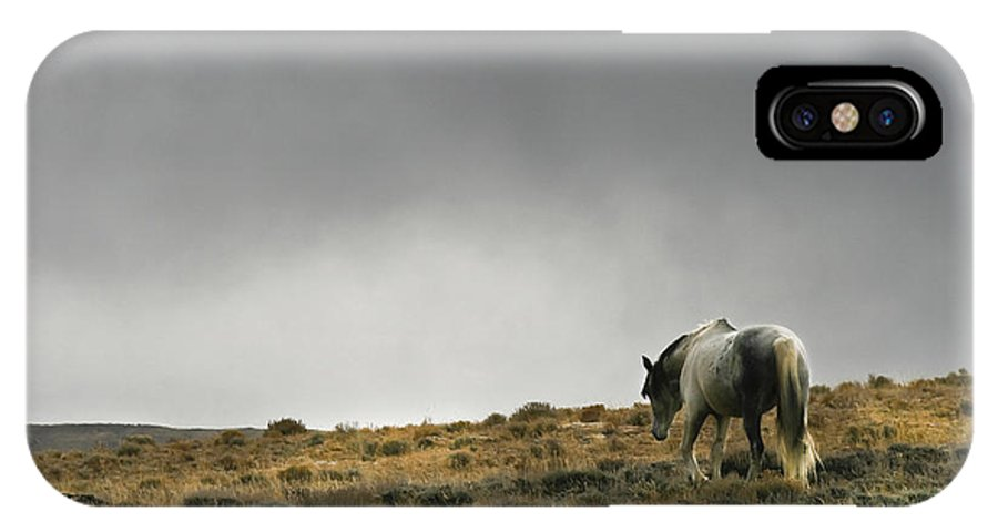 Nature IPhone X Case featuring the photograph Alone - Wild Horse - Green Mountain - Wyoming by Diane Mintle