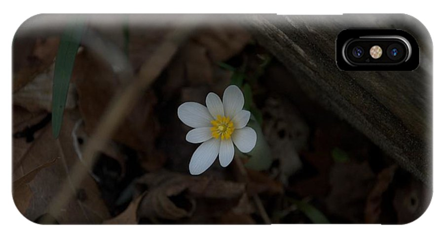 Forest IPhone X Case featuring the photograph Alone by Joseph Yarbrough