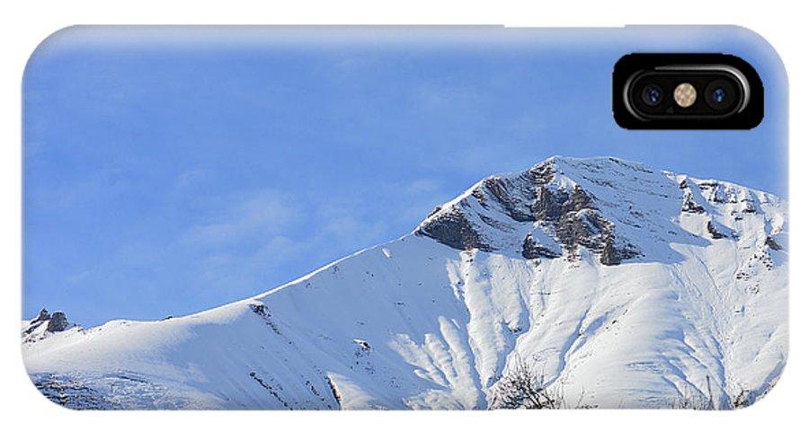 Vista IPhone X Case featuring the photograph Alps Vista by Felicia Tica