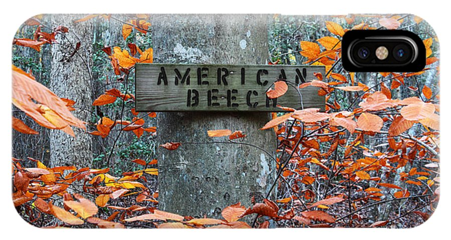 Apacheco IPhone X Case featuring the photograph American Beech by Andrew Pacheco
