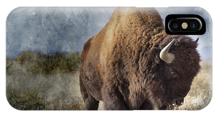 Buffalo IPhone X Case featuring the photograph American Buffalo by Andresen Photography