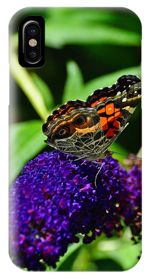 Pats House1jpg.982e7american Lady Butterfly IPhone X Case featuring the photograph American Lady Butterfly by Chris Tennis