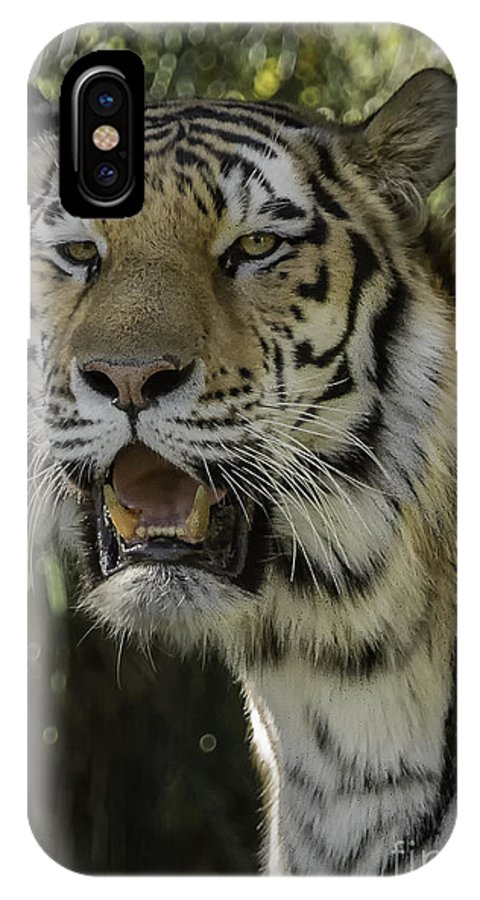 Tiger IPhone X / XS Case featuring the photograph Amur Tiger by Michael Goodell