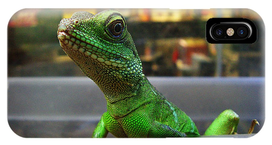 Gecko IPhone X / XS Case featuring the photograph An Escape Artist by Xueling Zou