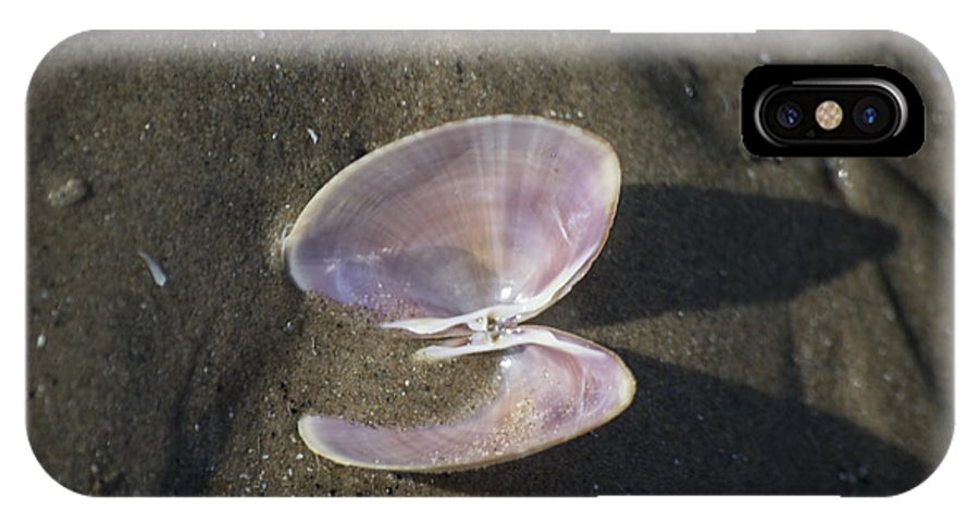 Sea Shell IPhone X Case featuring the photograph Angel Wings by Spikey Mouse Photography