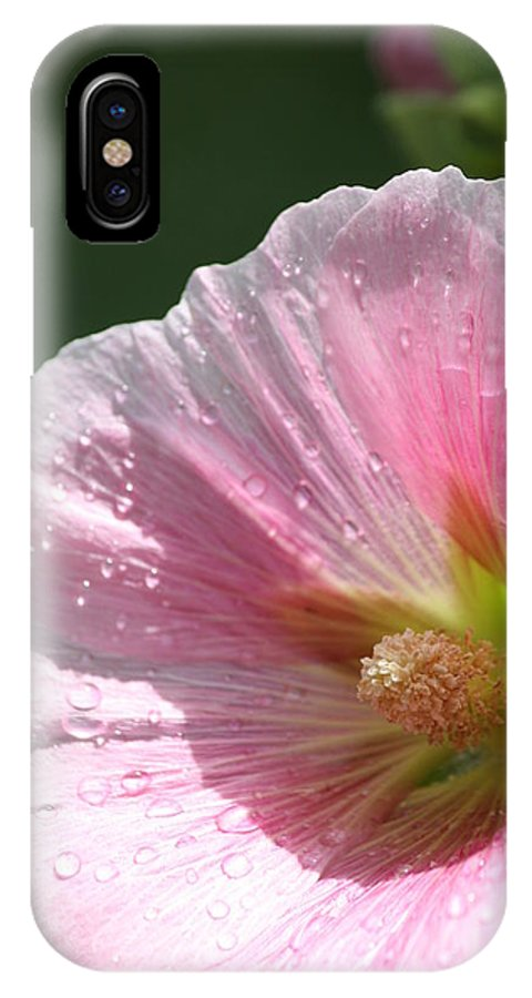 Hollyhock IPhone X Case featuring the photograph Another Angle by Sue Chisholm