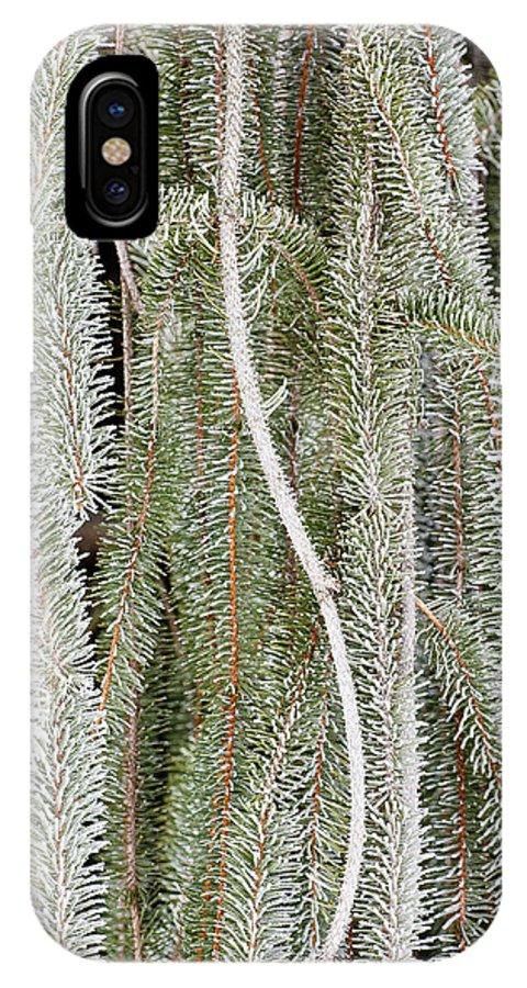 Arboretum IPhone X / XS Case featuring the photograph Arboretum Hoar Frost 2 by Steven Ralser
