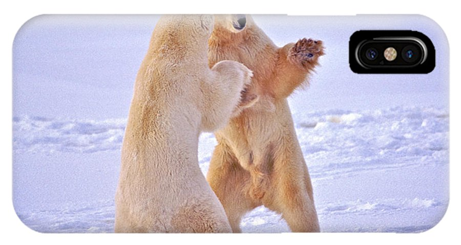 Arctic IPhone X / XS Case featuring the photograph Arctic Dance by Randy Green