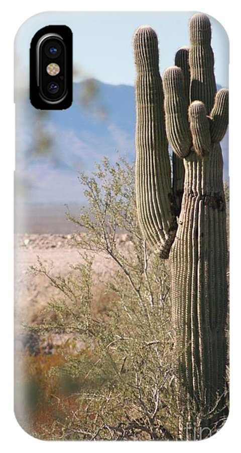 Cactus IPhone X Case featuring the photograph Arizona Giant Seguero Cactus by Teresa French