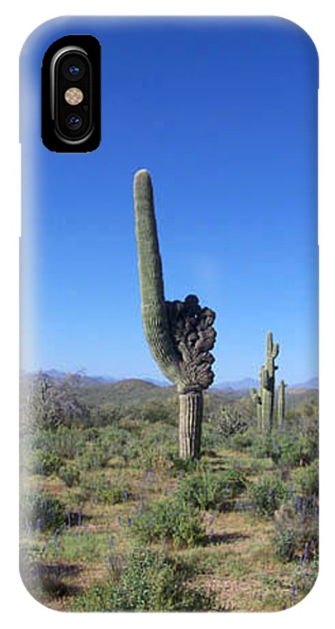 Sahuaro IPhone Case featuring the photograph Arizona Is Number One by Kathy McClure