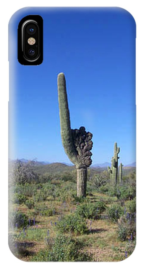 Sahuaro IPhone X Case featuring the photograph Arizona Is Number One by Kathy McClure