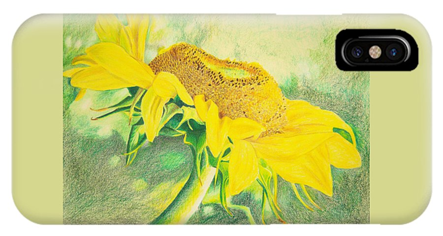 Sunflower Art Print IPhone Case featuring the mixed media Sunflower Print Art For Sale Colored Pencil Floral by Diane Jorstad