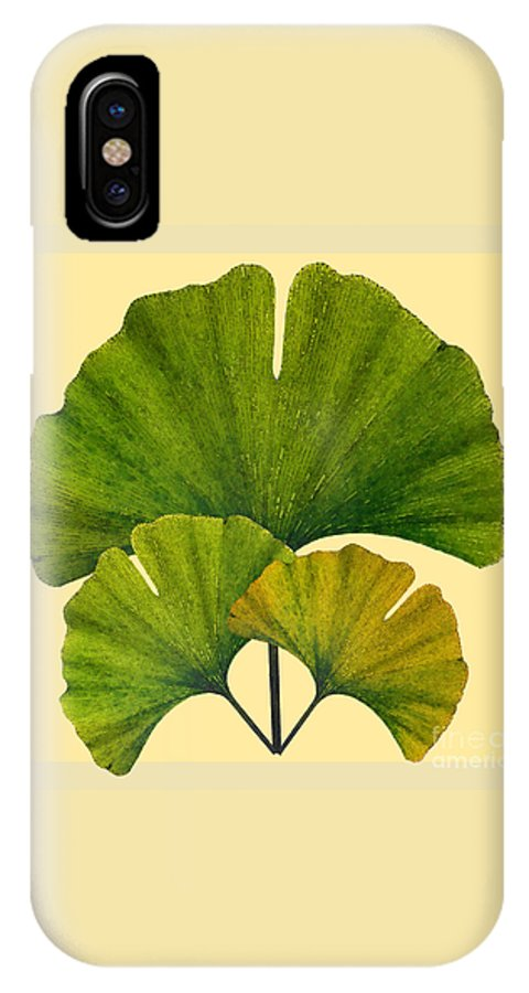 Ginko IPhone X Case featuring the digital art Arts And Crafts Movement Ginko Leaves by Melissa A Benson