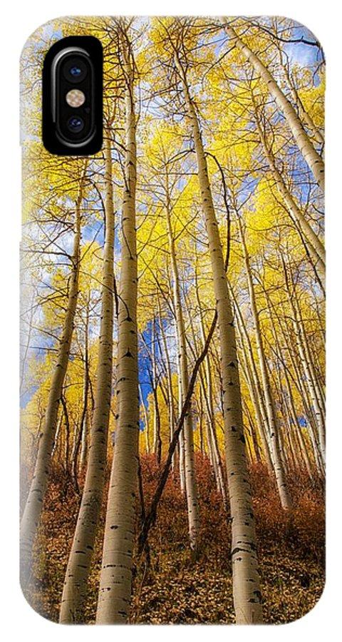Aspens IPhone X Case featuring the photograph Aspen After Aspen by Mitch Johanson