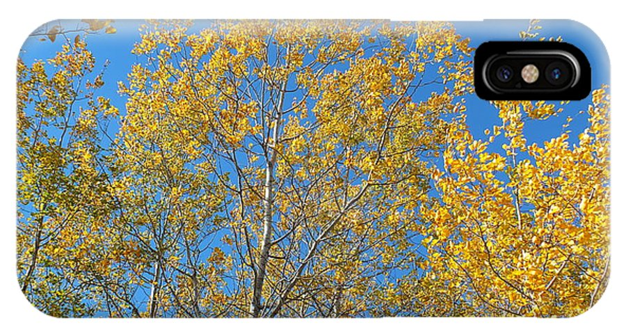 New England IPhone X Case featuring the photograph Aspen Gold by Gene Cyr