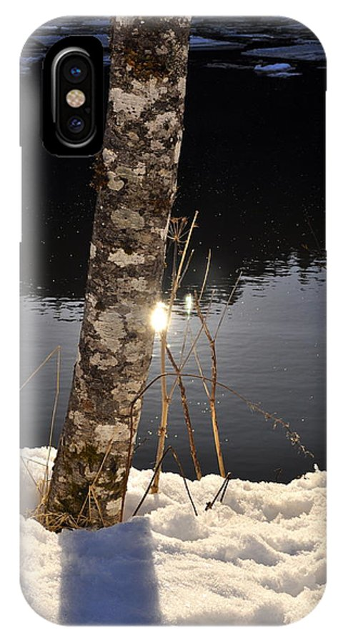 Tree Trunk IPhone X Case featuring the photograph Alder In Winter by Cathy Mahnke