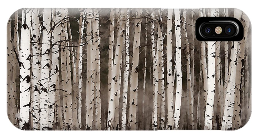 Aspens IPhone X Case featuring the photograph Aspen by Irene Tillusz