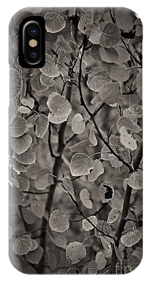 Aspen IPhone X Case featuring the photograph Aspen Leaves by Charles Muhle