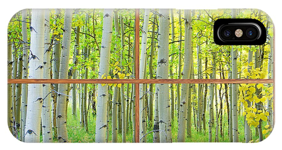 Aspens IPhone X Case featuring the photograph Aspen Tree Forest Autumn Picture Window Frame View by James BO Insogna