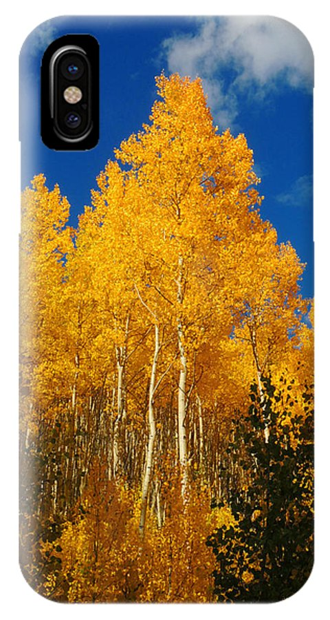Aspen IPhone X Case featuring the photograph aspen WOW by Steve Anderson