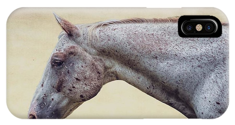 Horse IPhone X Case featuring the photograph Attention To Detail by Bonita Ash
