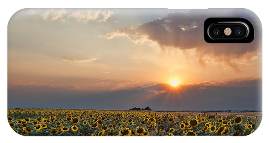 Flowers IPhone X Case featuring the photograph August Dreams by Jim Garrison