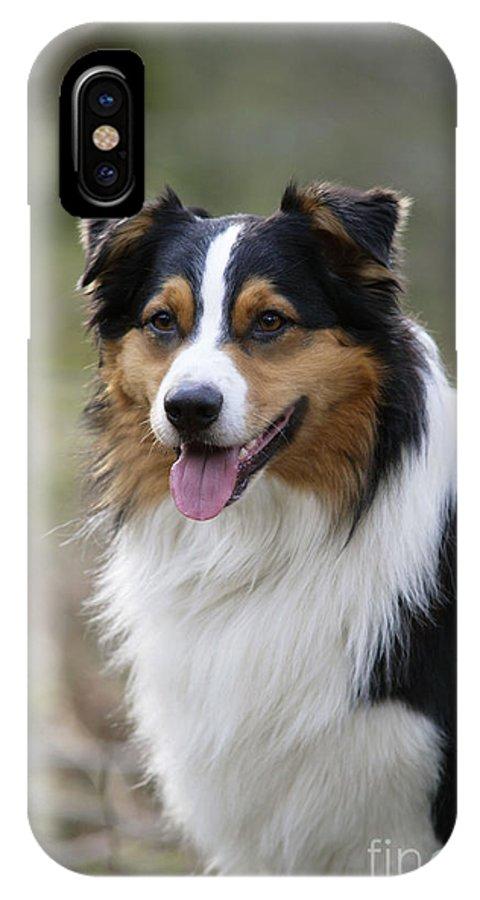 Australian Shepherd IPhone X / XS Case featuring the photograph Australian Shepherd Dog by John Daniels
