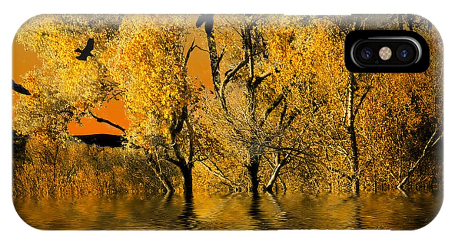 Mountains IPhone X Case featuring the digital art Autum Leaves by Angelika Drake