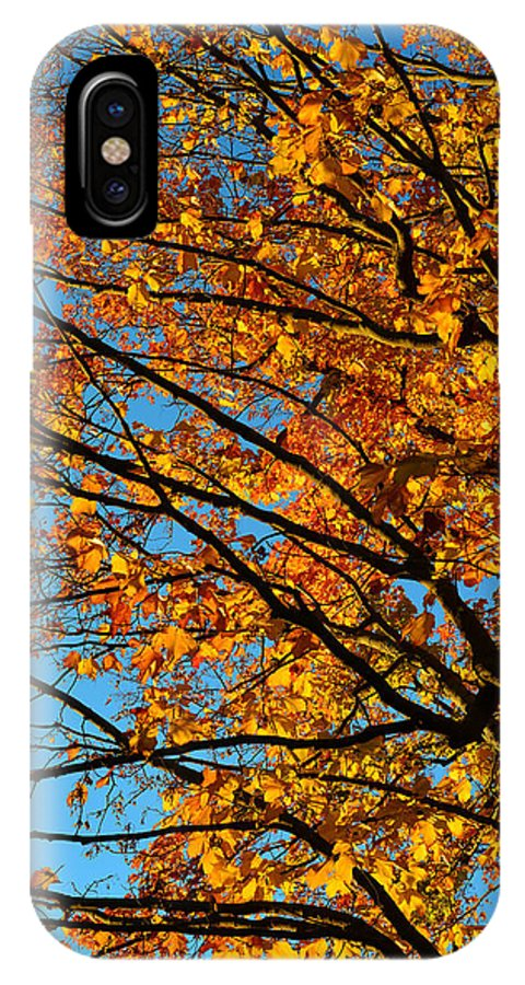 Landscape IPhone X Case featuring the photograph Autumn 2013 by Dragan Kudjerski