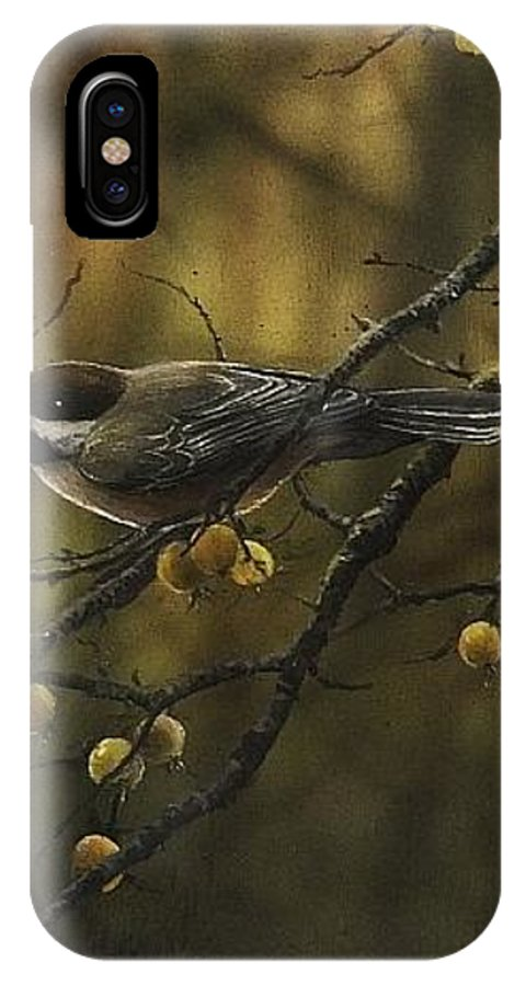 Chickadee IPhone X / XS Case featuring the painting Autumn Call by Ted Hayward