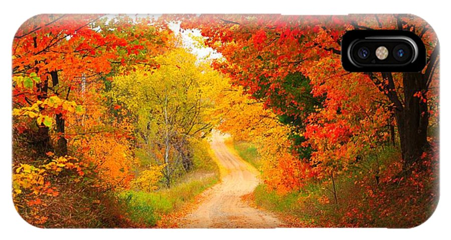 Autumn IPhone X Case featuring the photograph Autumn Cameo Road by Terri Gostola