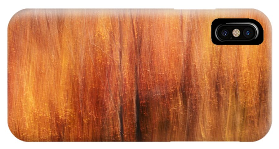 Autumn IPhone X Case featuring the photograph Autumn Canvas by Aimelle