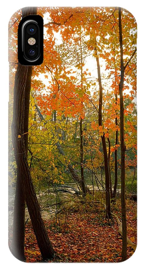 Forest IPhone X Case featuring the photograph Autumn Colors by Charles Owens