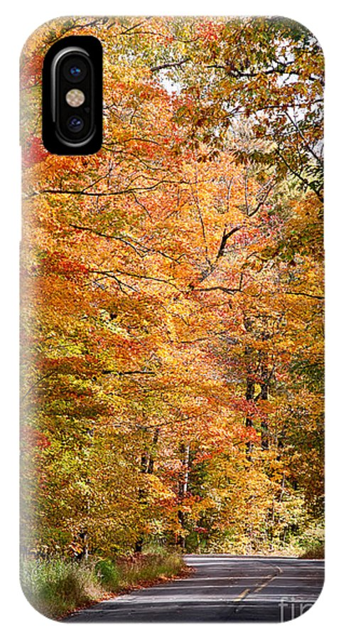 David Perry Lawrence IPhone X Case featuring the photograph Autumn Colors - Colorful Fall Leaves Wisconsin IIi by David Perry Lawrence