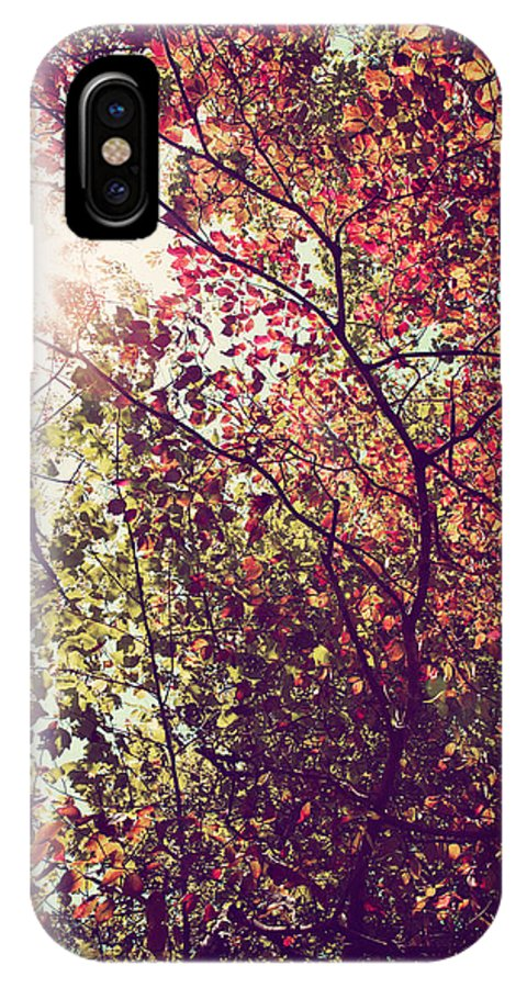 Autumn IPhone X Case featuring the photograph Autumn Dresses In Flame And Gold by Kim Fearheiley