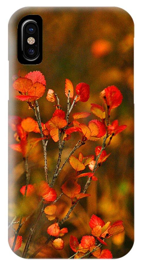 Autumn IPhone X Case featuring the photograph Autumn Emblem by Jeremy Rhoades