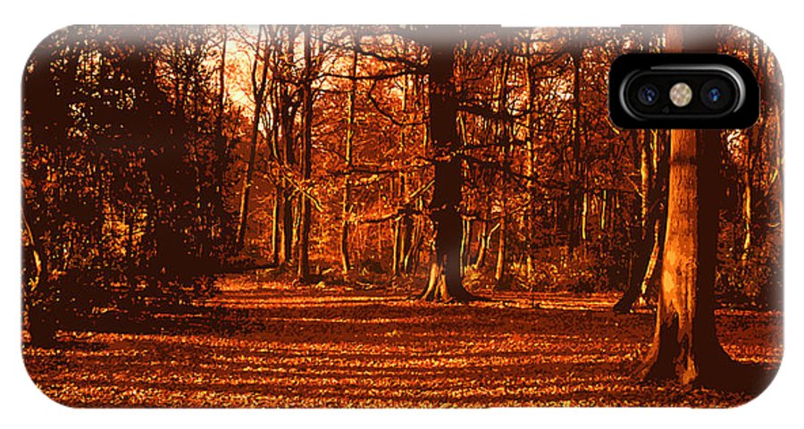 Autumn IPhone X Case featuring the painting Autumn Forest by Anthony Dalton