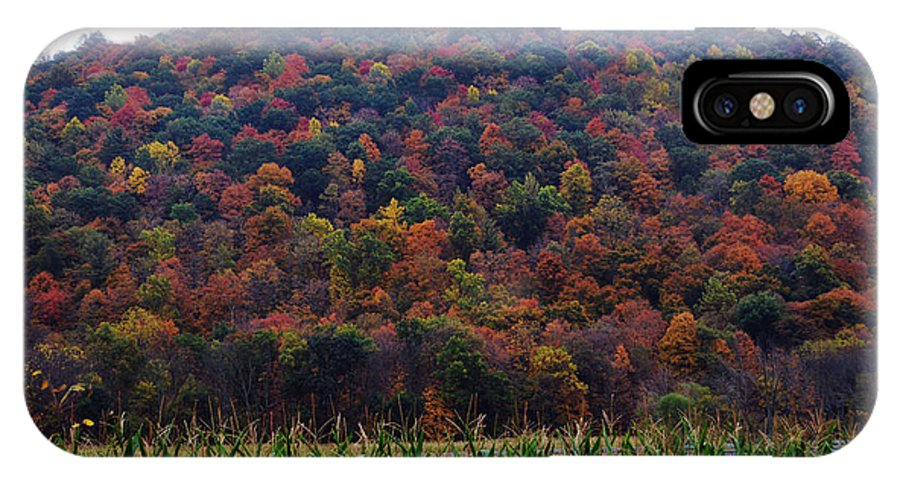 Nature Photography IPhone X Case featuring the photograph Autumn Glory by Susan Will