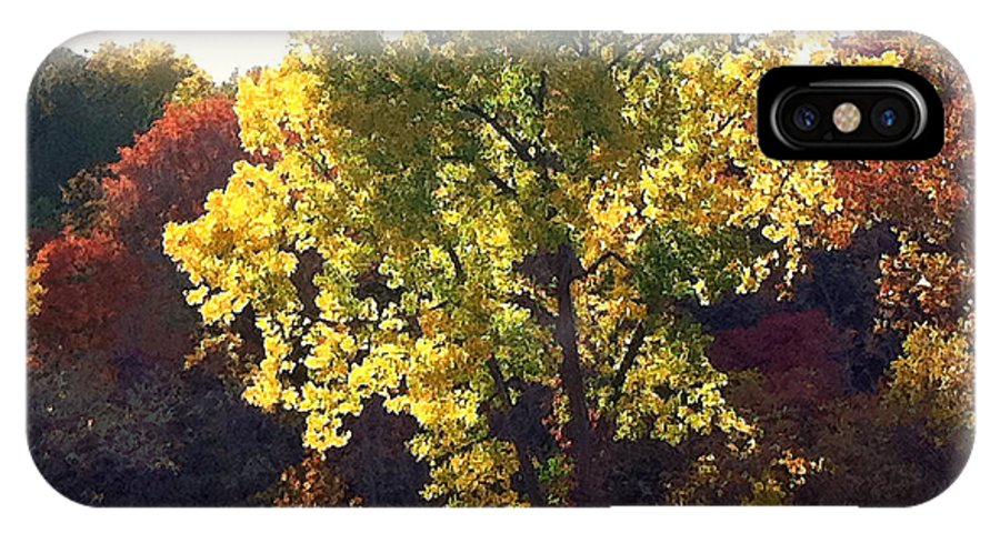 Landscape IPhone X Case featuring the photograph Autumn Gold by Steve Karol
