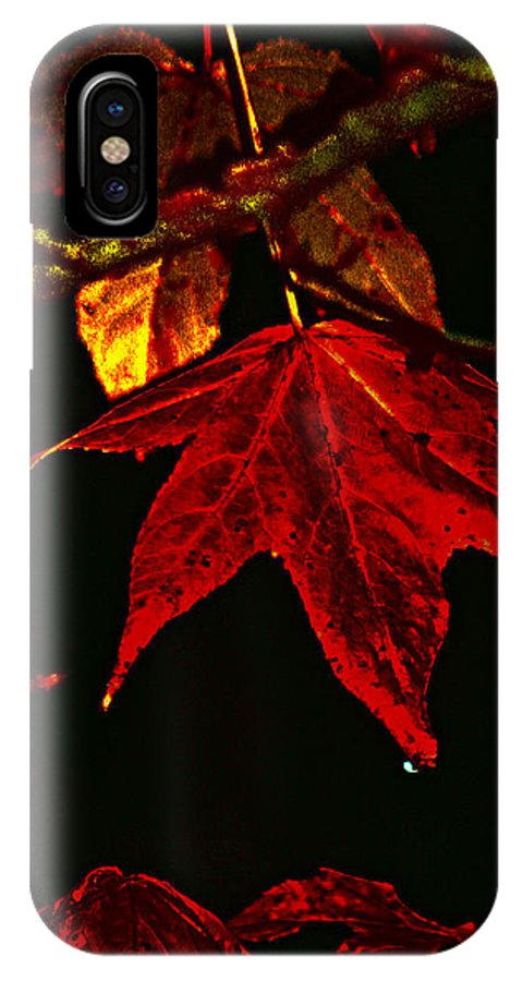 Red Leaves IPhone X / XS Case featuring the photograph Autumn Leaves by Lesa Fine