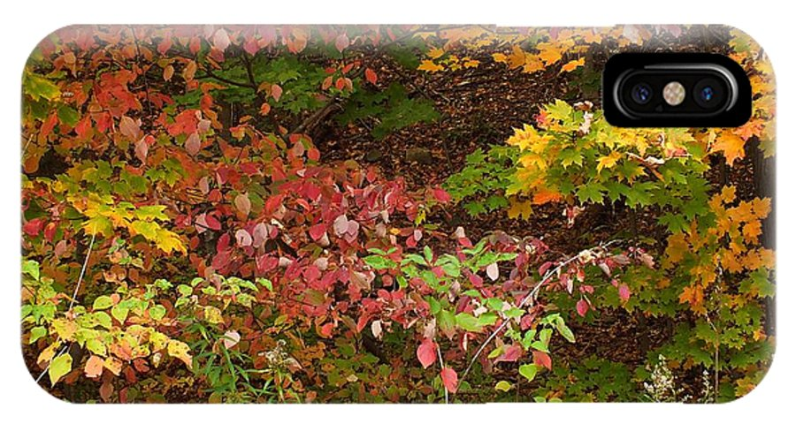 New England IPhone X Case featuring the photograph Autumn Mix by Gene Cyr