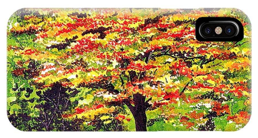 Fine Art IPhone X Case featuring the painting Autumn Splendor by Patricia Griffin Brett