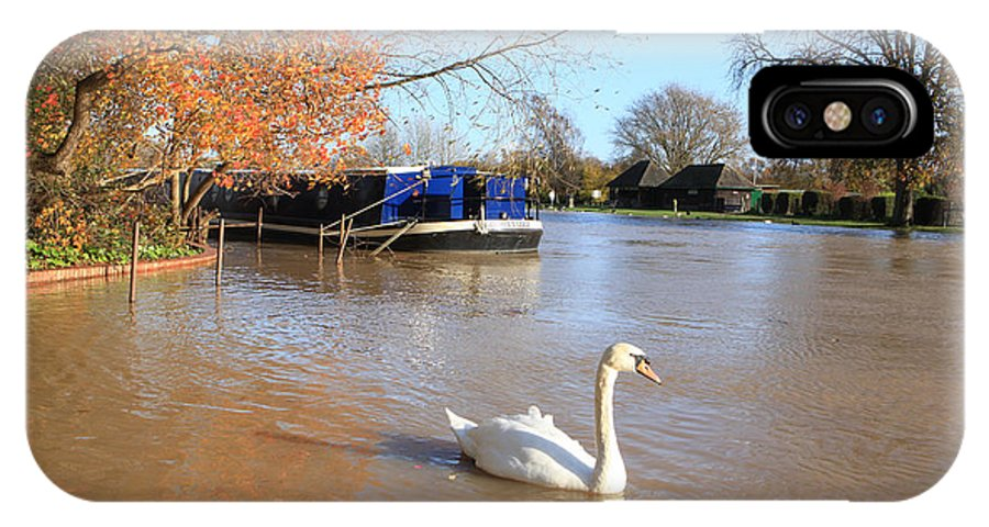 Swan IPhone X Case featuring the photograph Autumn Swan by Paul Felix